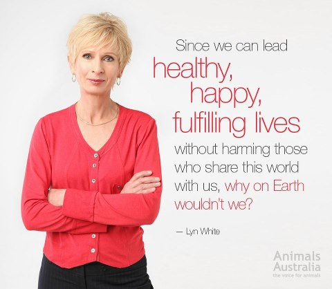 Happy without harming others 559877_10151760440580299_587998288_n